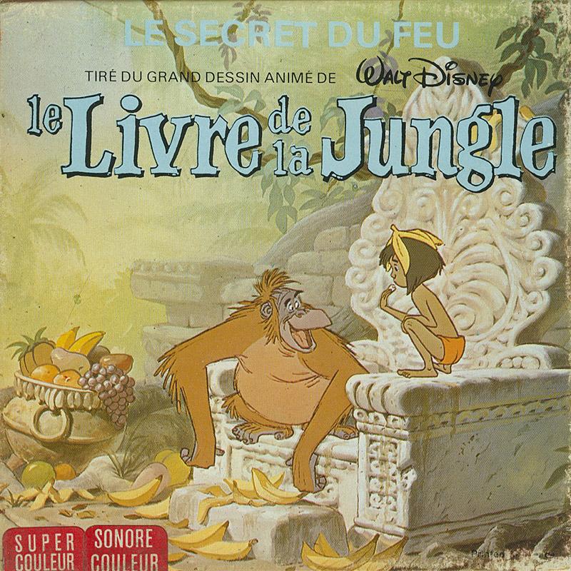 Livre De La Jungle Le Le Secret Du Feu Jungle Book